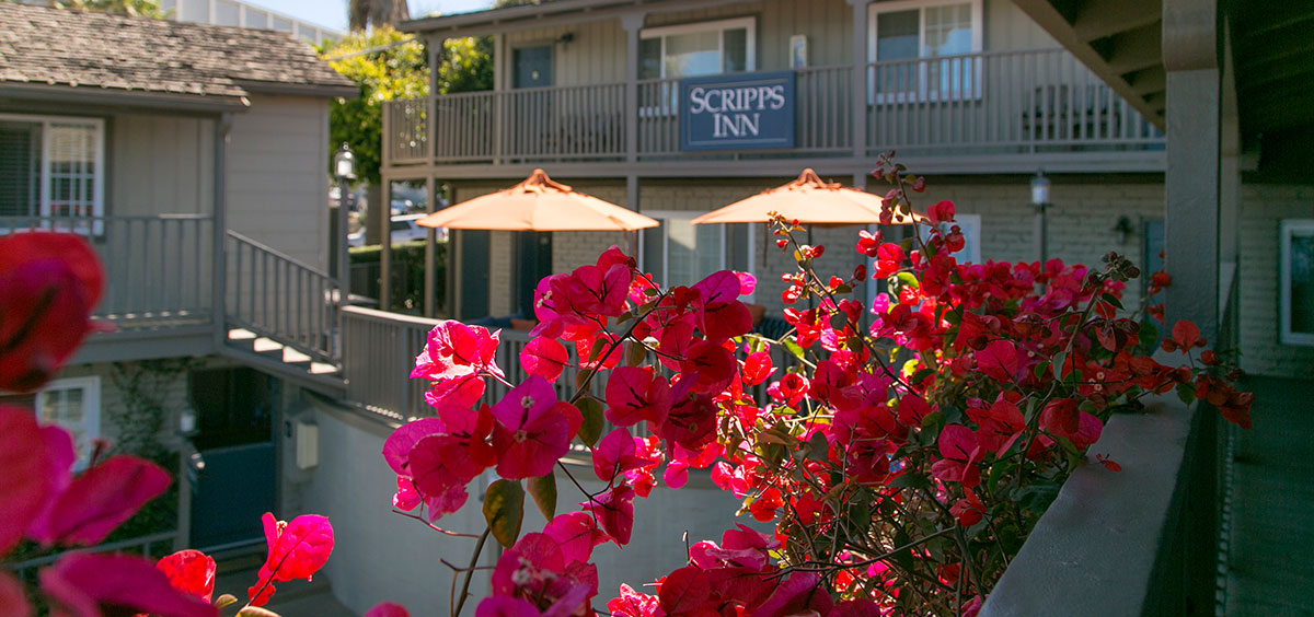 Beautiful pink flowers in planters off the deck rails with Scripps Inn sign in the background