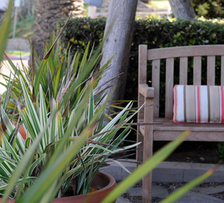 Planters with green plants by a bench and trees at Scripps Inn